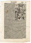 Folio 102, Recto by Harmann Schedel