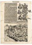 Folio 26, Verso by Harmann Schedel
