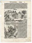 Folio 50, Recto by Harmann Schedel