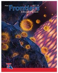 New Frontiers 2017-18 Brochure